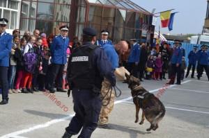 5-ziua-jandarmeriei-2014